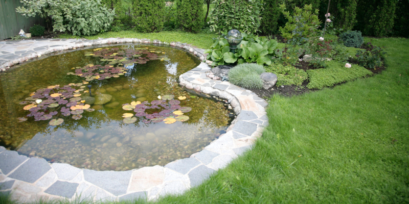 Thinking of Putting a Pond in Your Property? Here Are 4 Benefits of Hiring a Professional Pond Contractor